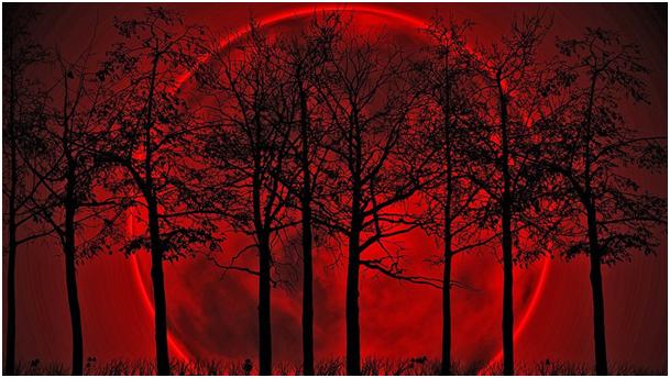 L'exceptionnelle lune de sang