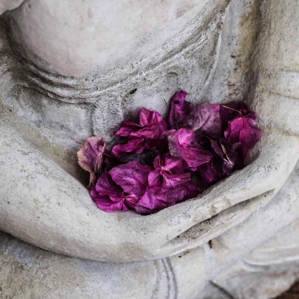 Bouddha en pierre aux fleurs viollettes Reiki Provence